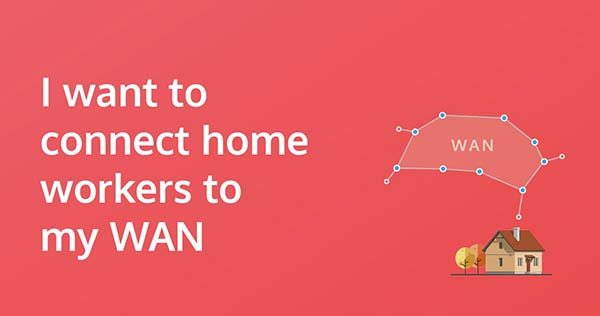 I want to connect home workers to my WAN